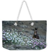 A Wild Horse On A Wildflower Covered Weekender Tote Bag
