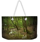 A Woodland Stream In Cades Cove No.472 Weekender Tote Bag