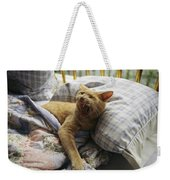 A Yawning Cat Wakes From A Nap Weekender Tote Bag