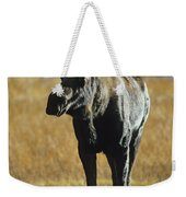 A Young Bull Moose Weekender Tote Bag