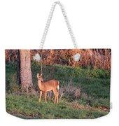 Aah Baby - Deer Weekender Tote Bag