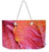 Abstract Dogwood In Autumn Weekender Tote Bag