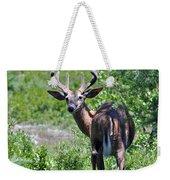 Acadia Buck Weekender Tote Bag