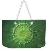 Actinophyrs Lm Weekender Tote Bag