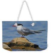 Adult Common Tern Weekender Tote Bag