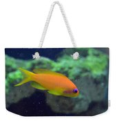 African Anthias Weekender Tote Bag