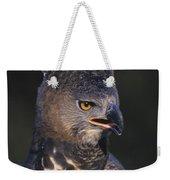 African Crowned Eagle Weekender Tote Bag