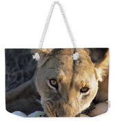 African Lion Panthera Leo Raiding Weekender Tote Bag