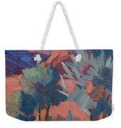 Afternoon Light - Santa Rosa Mountains Weekender Tote Bag