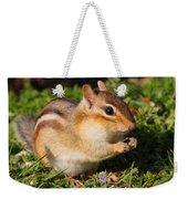 Afternoon Snack - Eastern Chipmunk  Weekender Tote Bag