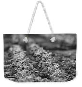 Agriculture- Soybeans 2 Weekender Tote Bag