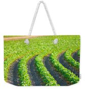 Agriculture- Soybeans 3 Weekender Tote Bag