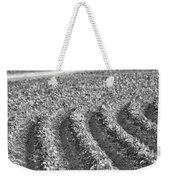 Agriculture- Soybeans 4 Weekender Tote Bag