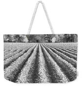 Agriculture-soybeans 6 Weekender Tote Bag