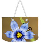 Alabama Blue-eyed Grass Wildflower - Sisyrinchium Angustifolium Weekender Tote Bag
