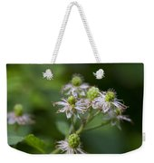 Alabama Wild Blackberries In The Making Weekender Tote Bag