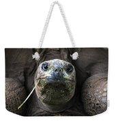 Aldabra Tortoise Weekender Tote Bag