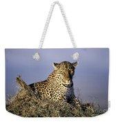 Alert Female Leopard Weekender Tote Bag
