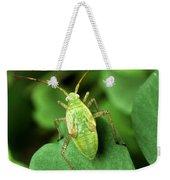 Alfalfa Plant Bug Weekender Tote Bag