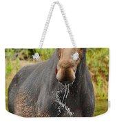 Algonquin Bull Weekender Tote Bag