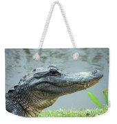 Alligator Cameron Prairie Nwr La Weekender Tote Bag