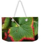 Almost Autumn Weekender Tote Bag