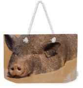 Almost Heaven Weekender Tote Bag