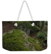 Along The Russell Pond Trail, A Young Weekender Tote Bag