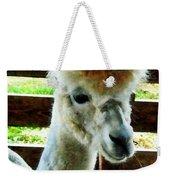 Alpaca Closeup Weekender Tote Bag