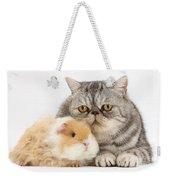 Alpaca Guinea Pig And Silver Tabby Cat Weekender Tote Bag