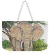 Amboseli Elephant Weekender Tote Bag