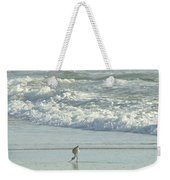 American Avocet In Non-breeding Plumage      Recurvirostra Americana  Weekender Tote Bag