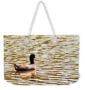 American Coot Floating By Weekender Tote Bag