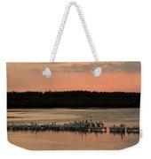 American White Pelicans At Sunset Weekender Tote Bag