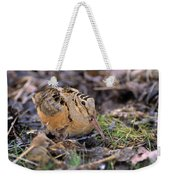 American Woodcock Bird Weekender Tote Bag