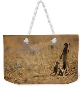 An Adult Meerkat Stands Guard Over Two Weekender Tote Bag