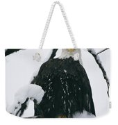 An American Bald Eagle Perched Weekender Tote Bag