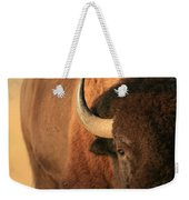 An American Bison In The Early Morning Weekender Tote Bag