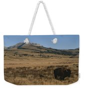 An American Bison Standing Weekender Tote Bag