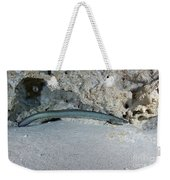 An American Eel Prowls Along The Edge Weekender Tote Bag