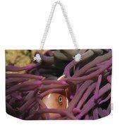 An Anemonefish Peeks Weekender Tote Bag