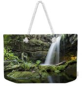 An Aquarium In Tennessee Weekender Tote Bag