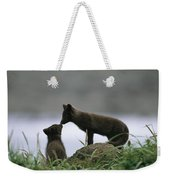 An Arctic Fox And Her Kit.  The Foxes Weekender Tote Bag