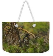 An Eagle And Young Weekender Tote Bag