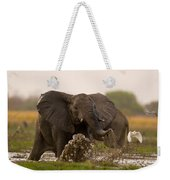 An Elephant Charges When Startled Weekender Tote Bag
