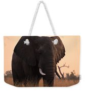 An Elephant In The Okavango Delta Weekender Tote Bag