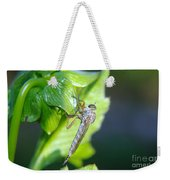 An Insect Resting  Weekender Tote Bag