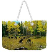 An Old Clear Cut In Autumn  Weekender Tote Bag