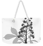 An X-ray Of A Chestnut Tree Flower Weekender Tote Bag