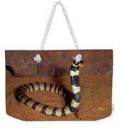 Angolan Coral Snake Defensive Display Weekender Tote Bag